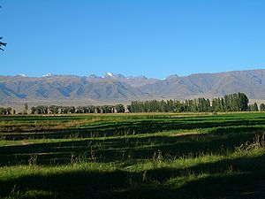 E8278-Tamchy-fields.jpg