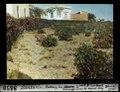 ETH-BIB-Santorin, Rebberg bei Méravigli-Dia 247-08850.tif