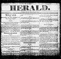 Edison Herald newspaper xx4967.jpg