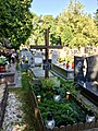 Edward Leja grave, Krakow Military cemetery, Poland, 2015, 02.jpg