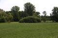 Eichenzell Welkers Auenverbund Fulda LPA378401 Ciconiidae.png