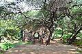 Enclosure 035.jpg