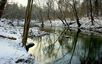 Eno River State Park - View from Laurel Bluffs trail