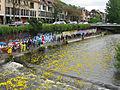 Entenrennen auf der Dreisam in Freiburg, Plastikenten an der Leo-Wohleb-Brücke.jpg