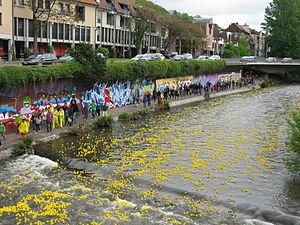 Rubber duck - A rubber duck race in Freiburg in Germany