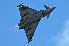 Eurofighter 9803 2.jpg