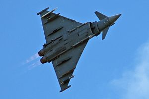 Delta wing - The Eurofighter Typhoon of the German Air Force has a tailless delta wing configuration.