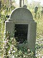 Evangelický hřbitov ve Strašnicích 77.jpg