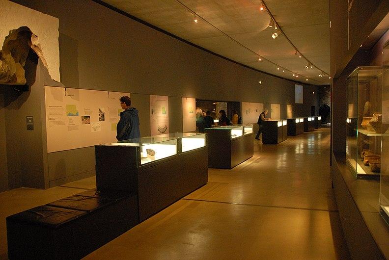Exposition temporaire du Musée de Préhistoire des gorges du Verdon.jpg
