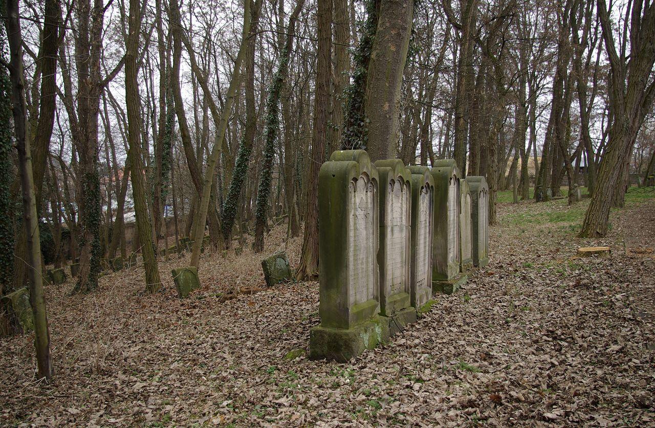 Fürth Alter Jüdischer Friedhof 009.JPG