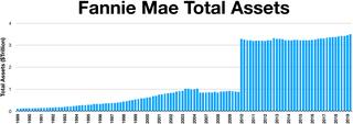 Fannie Mae forvaltningskapital