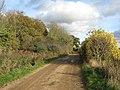 Farm track past Daw's Wood - geograph.org.uk - 1568821.jpg