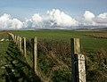 Farmland, Ardnave, Islay - geograph.org.uk - 273741.jpg