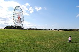 Ferris wheel of the Hitachi beach park,hitachi-kaihin-koen,hitachinaka-city,japan.JPG