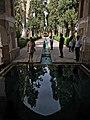 Fin garden by Adel Bazmeh.jpg