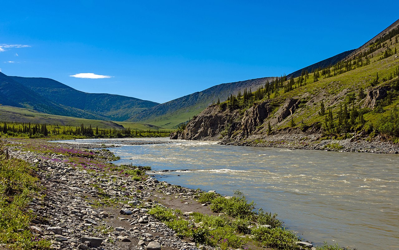 Wolf Creek Stream