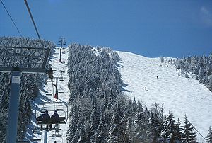Sugarbush Resort - A view of Mt. Ellen's Black Diamond (left) and F.I.S. (right) trails from the Summit Quad. Photo taken during 05/06 season.