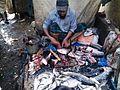 Fish market jatrabari (3).jpg
