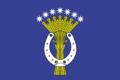Flag of Basakinskoe.png