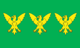 Flag of Caernarfonshire.png