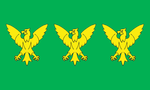 Flag of Caernarfonshire - Image: Flag of Caernarfonshire