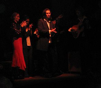 Flamenco - Flamenco performance by the La Primavera group