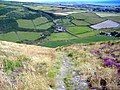 Fleshwick farm from Bradda Hill, Isle of Man - geograph.org.uk - 207664.jpg