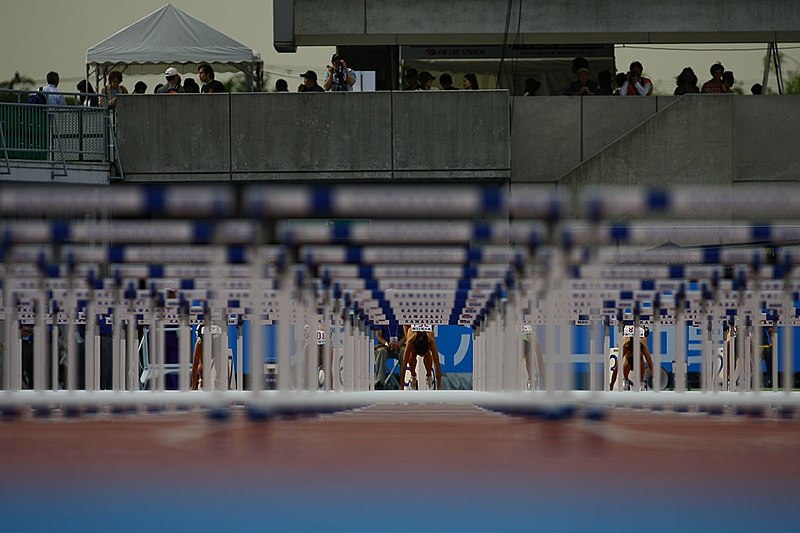File:Flickr - tpower1978 - Japan Athletics Championships (4).jpg