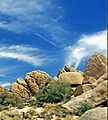 Fly-over, Joshua Tree NP, CA 8-13 (14923091827).jpg