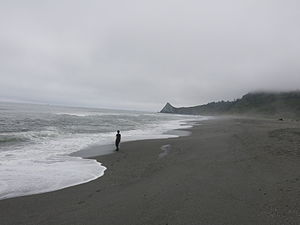 Foggy misty grey beach at the northern end of patrick's point state park in humboldt county california.JPG