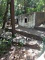 Fogo-Parc forestier de Monte Velha-Habitations (1).jpg