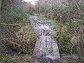 Footbridge in Ryarsh Wood - geograph.org.uk - 1165136.jpg