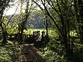 Footbridge over River Lew - geograph.org.uk - 421342.jpg