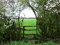 Footpath, Hay Lane, Salthrop - geograph.org.uk - 757346.jpg