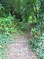 Footpath, Urchfont - geograph.org.uk - 1430994.jpg