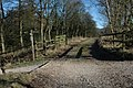 Footpath junction, Macclesfield Forest - geograph.org.uk - 700349.jpg