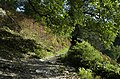 Footpath on terrace to the north of Rydal - geograph.org.uk - 989253.jpg