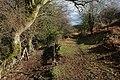 Footpath to Stanton - geograph.org.uk - 348493.jpg