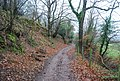 Footpath up Bicknoller Hill - geograph.org.uk - 1655731.jpg