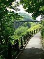 Footpath view at Ironbridge - geograph.org.uk - 1013900.jpg