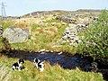 Ford at sheepfold - geograph.org.uk - 415906.jpg