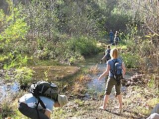 San Juan Creek river in United States of America