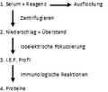 Forschungsprotokoll1.png