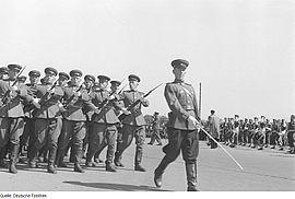 257 стрелковая дивизия сформирована из войск нквд: