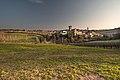 Fra le vigne di Levizzano Rangone.jpg