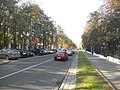 Frunze Street, Minsk.jpg
