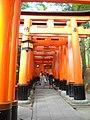 Fushimi-sembon-torii, june2019.jpg