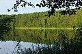 Gėlaičio ežeras - panoramio (3).jpg