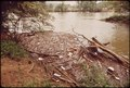 GARBAGE AND TRASH ALONG BANK OF CHATTAHOOCHEE RIVER - NARA - 545945.tif