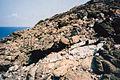 Gabbroic vein in peridotite, Cap Corse.jpg